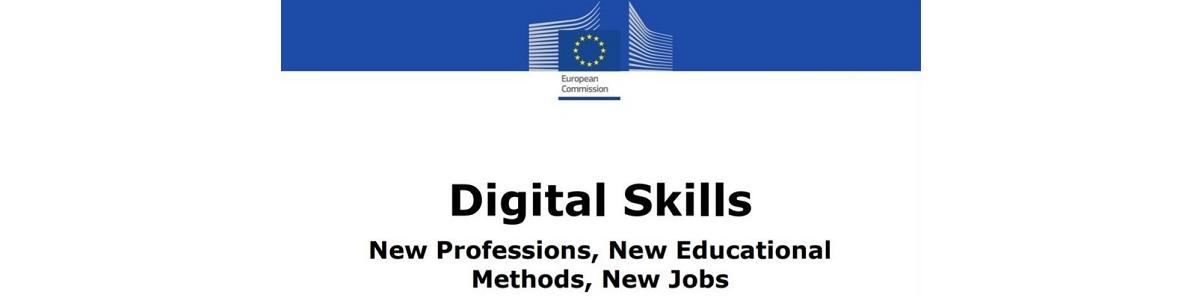 Rapport Digital Skills